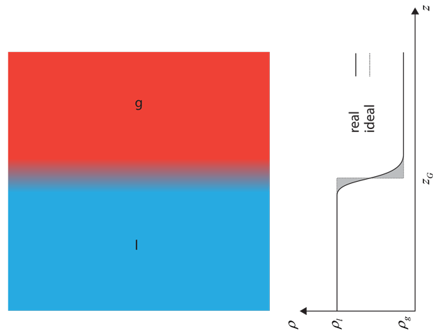 Density profile at a liquid-gaseous interface