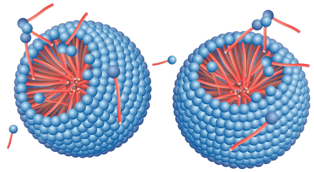Spherical micelles
